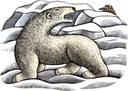 the-lamp-polar-bear.jpg